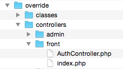 AuthController override folder